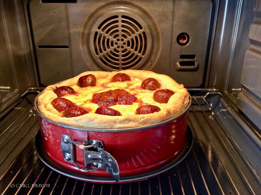 Fig.Pie.03-0532