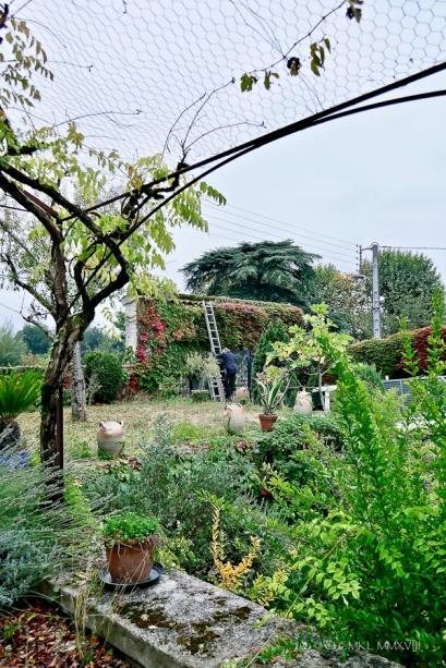 Jardin.04-1330412