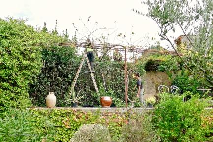 Jardin.06-1330490