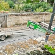 Jardin.11-1330512