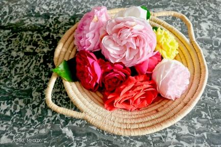 Roses.May-1360002