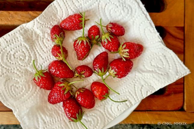 Strawberries.May-1360102