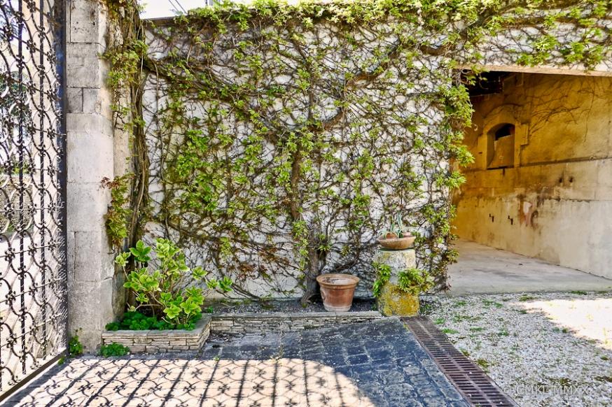 April.Garden.02-1410087